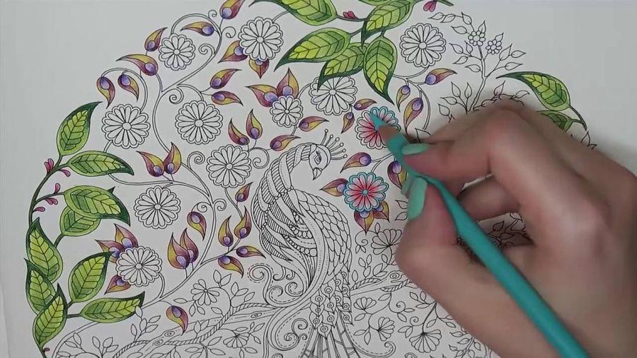 Le coloriage pour adultes : tendance ou réel anti-stress ?